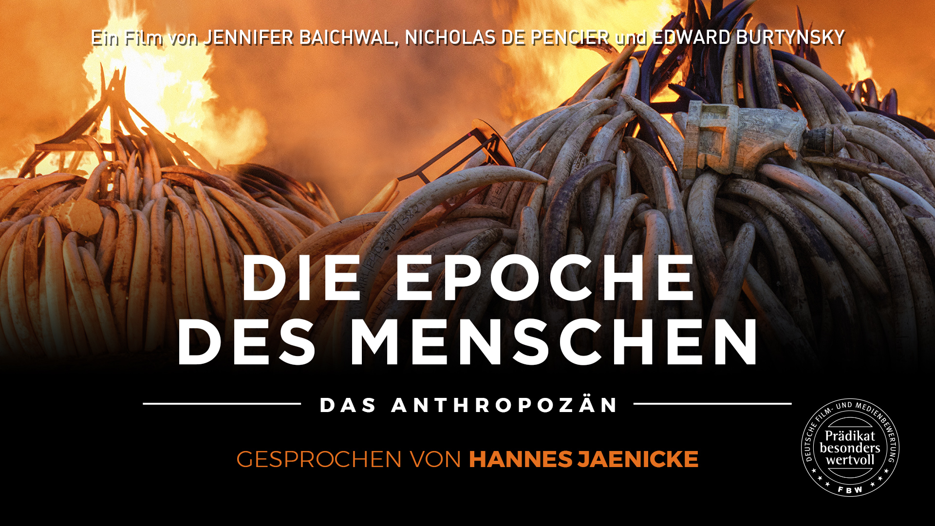 Die Epoche des Menschen - Das Anthropozän