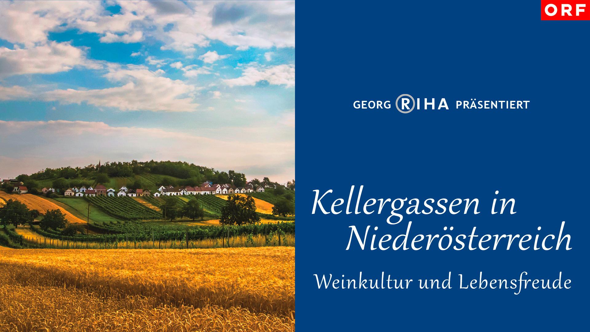 Kellergassen in Niederösterreich - Weinkultur und Lebensfreude