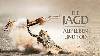 Die Jagd - Auf Leben und Tod [dt./OV]