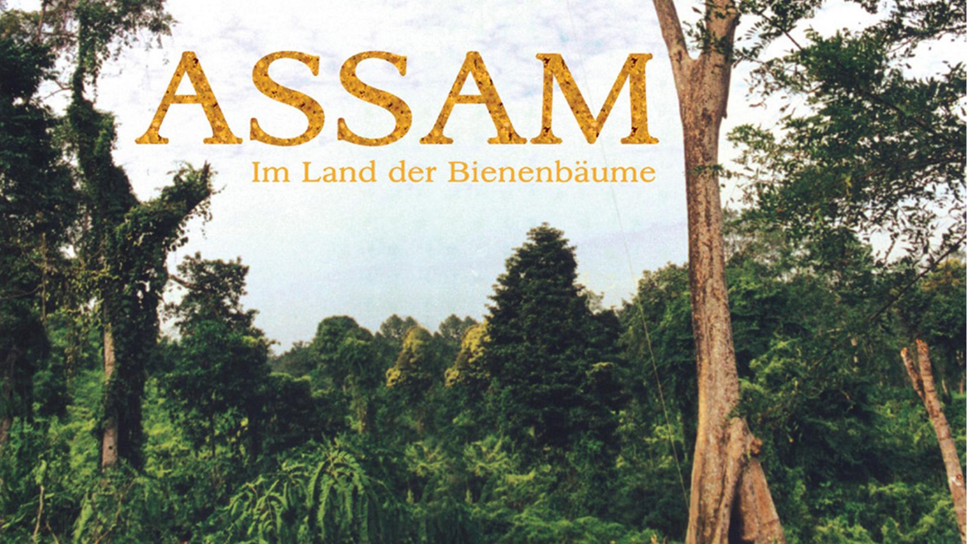 Assam - Im Land der Bienenbäume