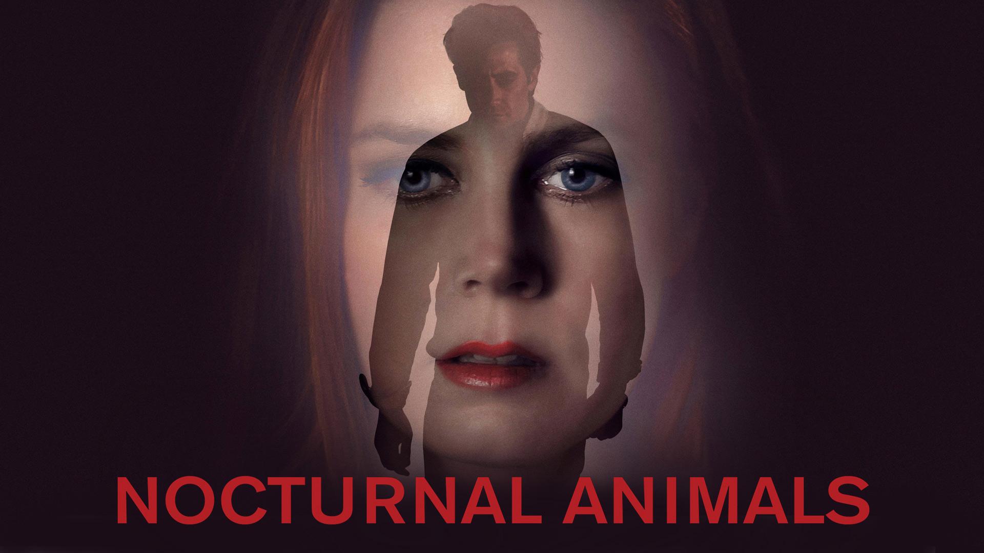 Nocturnal Animals [dt./OV]