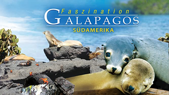Faszination Galapagos - Südamerika