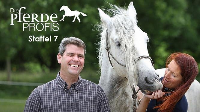 pferde profis