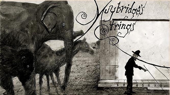 Muybridge's Strings on Amazon Prime Video UK